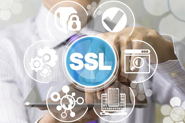 website ssl encryption logo